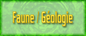 Liste de la faune et de la géologie unique !!!
